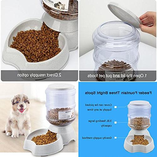 Blessed family Fountain,Automatic Dispenser,1 Pet Feeder